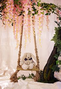 Mr bunny sits on our vintage swing in the blossom tree.