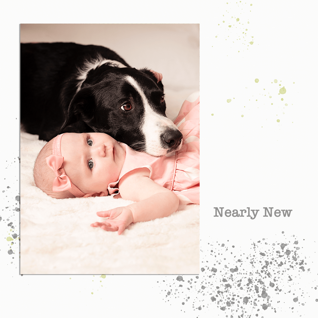 portrait of three month baby with dog.