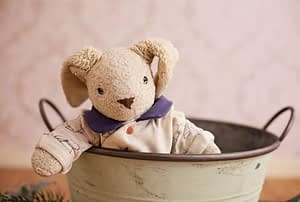 Mr Bunny sits in the bucket.