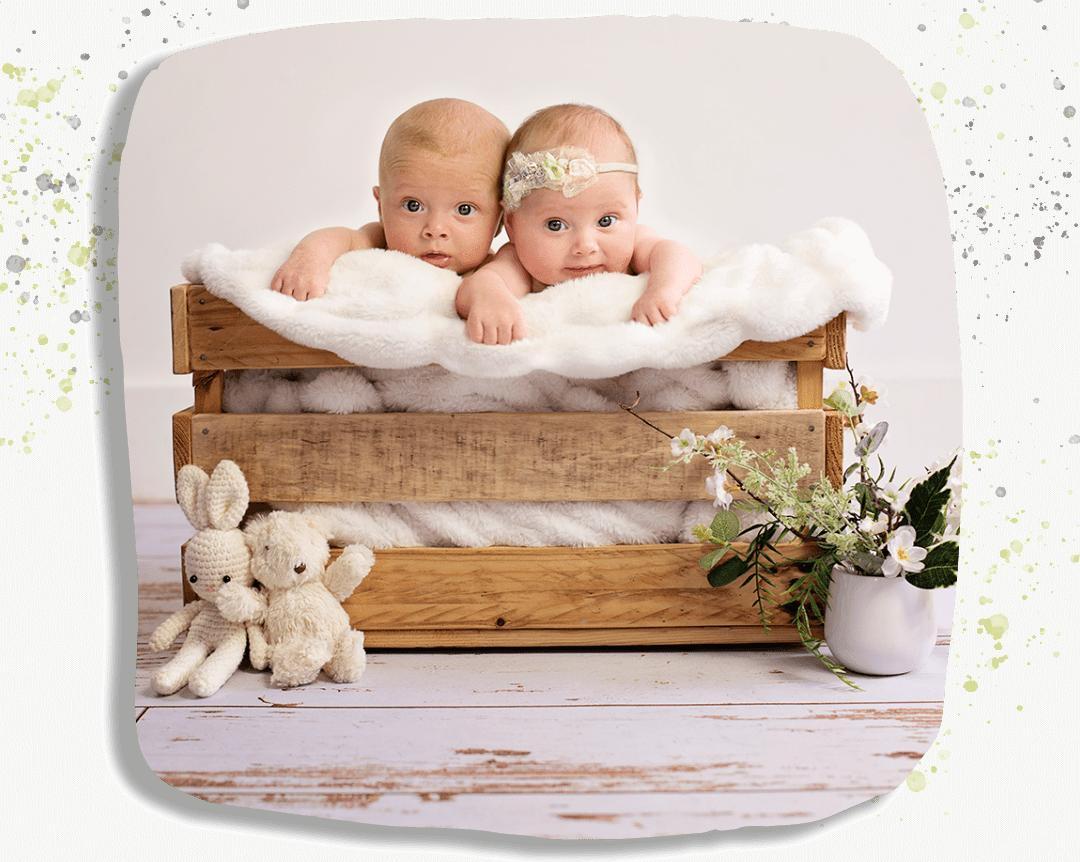 portrait of twins peeping out of basket.
